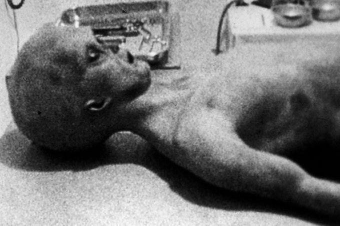 alian roswell ufo crash 1947 image 2