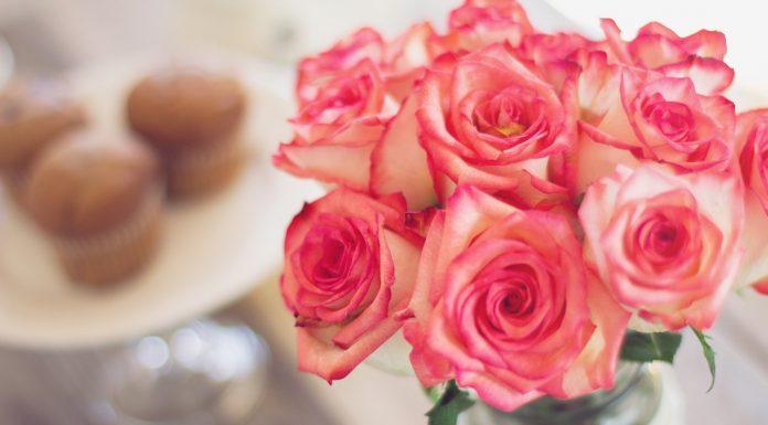 गुलाब के फूल और रंग