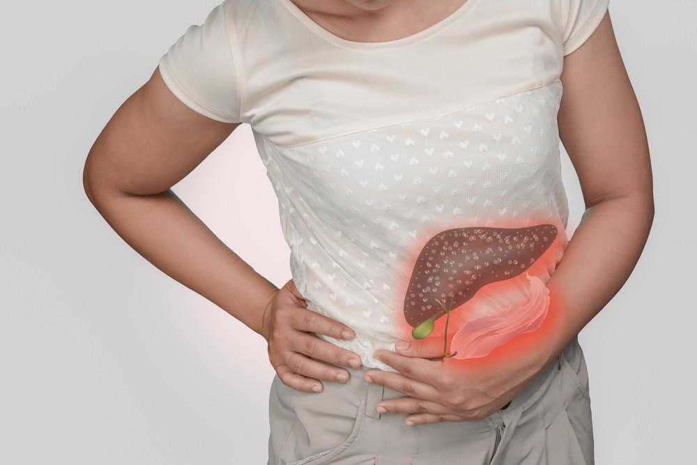 Digestive system figure